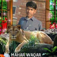 mahar 1 (78) (maharwaqar) Tags: mahar waqar