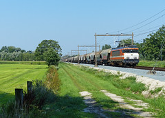 Locon 9906 te Hengelo Westermaat (Allard Bezoen) Tags: ex train ns 1600 1800 loc 9900 trein hengelo graan eloc 9906 alsthom locon westermaat graantrein schuifwandwagens