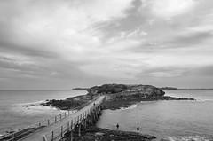 Bare Island Sydney