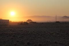 D20150823_0045 (bizzo_65) Tags: africa am desert dune duna namibia elim deserto sossusvlei 100mt
