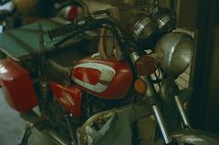 LM_REV_18649_ROLLEI_CR200 (OPTIK AXIS) Tags: camera leica film dof bokeh taiwan outoffocus 135 台灣 rf 50mmf14 leicacamera 写真 カメラ colorreversalfilm 正片 summiluxm 底片 銀塩 フィルム ライカ analoguephotography rolleifilm cr200 反轉片 膠卷 標準鏡頭 散景 mp85 焦外 リバーサルフィルム 単焦点レンズ ズミルックス summiluxm11450 ライカmレンズ summiluxm11450e46 blackpaintfinish