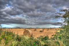 Hay Rolls (Charliebubbles) Tags: field canon eos countryside farm hay hdr hayroll 60d photomatixpro4 240915 photomatixcanoneos60d