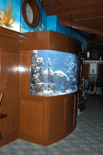 500 Gal Custom Reef - Restaurant - CT - 1