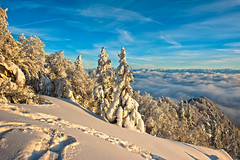 Swiss winter time , snow trees and clouds.Jura Mountains, Canton of Neuchâtel. No. 1610. (Izakigur) Tags: winter swiss myswitzerland suisse suisia svizzera schwiz schnee izakigur flickr tree neige switzerland mountains alps jura nikond700 nikkor armandamar topf500