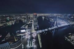 Rotterdam! From High Above! (timobongers) Tags: above sky urban night high rotterdam cityscape angle planet gotham erasmusbrug hihg lonley wilhelminapier