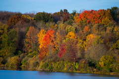 Spectacular! (Ron Mead) Tags: fall spectacular fallcolors indiana mothernature fallexplosion