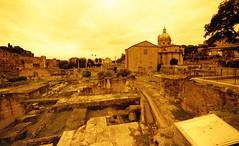 Rome, forum romain, lomography, (Patrick.Raymond (2M views)) Tags: nikonf100 expressyourself beautifulphoto samyang14mm redscale55200italieromeforum