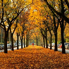 Herbsttag Altona (a_neuber) Tags: hamburg altona sunnyday dayoff iphone herbstfarben herbsttag duundich immerwiedersonntags