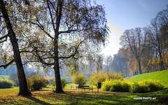 Parks when nature paints (malioli) Tags: autumn urban tree fall nature canon bench town europe place croatia par hrvatska karlovac
