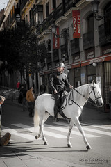 policia on horse (Mathew Mobley) Tags: madrid trip vacation people horse streets art love modern photoshop spain peace police places enhanced hdr policia edit hourse photomatrix