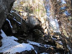 IMG_5388 (piragkov) Tags: travel snow mountains pine outdoors woods hiking weekend rocky ukraine explore rockymountains alpines snowmountains hikings горгани микуличин archypiragkov