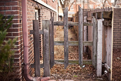 343/365 (local paparazzi (isthmusportrait.com)) Tags: wood brick texture square eos 50mm prime iso200 pod aperture gate raw f14 details clarity paparazzi local gutter usm madisonwi f18 ef sharpness 2015 canonraw cr2 isthmus 50mmf14usm 365project danecountywisconsin photoshopelements7 canon5dmarkii localpaparazzi redskyrocketman lopaps isthmusportrait