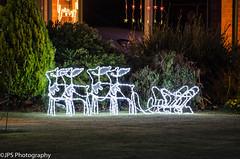 _DSC5450 (JPS Photography1) Tags: color night festive lights nikon australia xmass d7000
