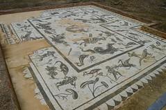 ITALICA (SEVILLA) (8) (DAGM4) Tags: espaa sevilla spain europa europe andalucia monumentos andalusia romanempire italica romanruins santiponce provinciadesevilla hispaniabaetica