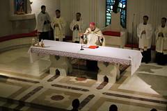 Profesiunea de credință (5)