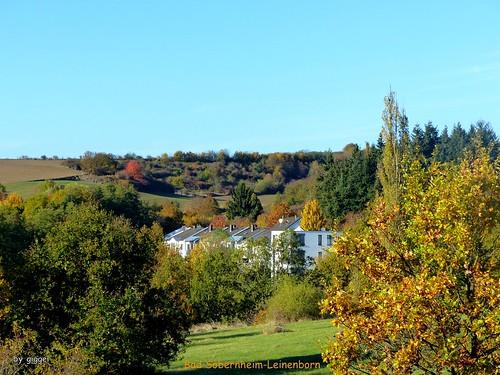 Bad Sobernheim - Leinenborn