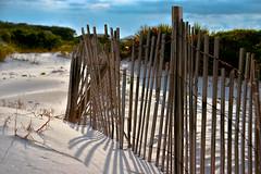 Beach Fence - Happy Fence Friday! (Terri Toll) Tags: fence beach coast d610 florida gulf happyfencefriday hff nikon nikond610 nature graytonbeach sand