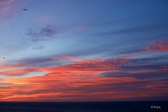 Morning sky (Kym.) Tags: andalucía andalusia bird blue cloud day4 morning nerja red sea sky spain view landscape