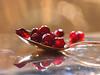 Red Sweet Fruit ... (MargoLuc) Tags: pomegranate macromondays theme redux2016 myfavoritethemeoftheyear thecolorred macro spoon silver reflections bokeh window light golden red backlight frutta december