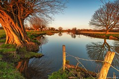 The Shire (John Soliven) Tags: dedhamvale flatfordmill suffolk essexsuffolkborder winter winterchill chilly shire lordoftherings riverstour nationaltrust tree veins reflections calm peace serene nikon nikond3 nikkor1424f28 warmlight constablecountry johnconstable