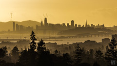 SF Skyline (lycheng99) Tags: sfbayarea sf sfskyline sfbaybridge howsfseessf sanfrancisco sanfranciscobayarea sanfranciscotravel sanfranciscobridges sanfranciscoskyline skyline skyscape sunset glare backlit berkeley claremonthotel sky goldenmoment trees silhouette architecture architecturaldesign buildings