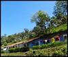 PWD Workers Houses (Indianature st2i) Tags: valparai westernghats tamilnadu tea indianature india indiragandhiwildlifesanctuary anamalaitigerreserve anamalais anamallais 2016 2017 nature