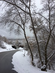IMG_2212 (augiebenjamin) Tags: winter provocanyon mountains orem provo lindon utah snow clouds trees sky byu brighamyounguniversity art