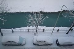 NEVE, DOVE SEI ???? (FRANCO600D) Tags: udine nevicata prospettiva canale acqua lampione auto inverno franco600d fvg friuli