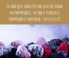 Dios puede hacer lo imposible (Comunion de Gracia Internacional) Tags: imposible