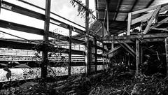 Bullfighting arena (cmunozh) Tags: bullfighting costa rica pura vida jungle blanco y negro abandoned sky wood