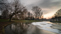 Stay Frosty (McQuaide Photography) Tags: haarlem noordholland northholland netherlands nederland holland dutch europe sony a7rii ilce7rm2 alpha mirrorless 1635mm sonyzeiss zeiss variotessar fullframe mcquaidephotography adobe photoshop lightroom tripod manfrotto light licht availablelight sunset zonsondergang water longexposure stad city urban canal gracht kinderhuissingel waterside lowlight outdoor outside waterfront cityscape winter nd neutraldensity 6stop ndfilter bwfilters cold koud ice freezing ijskoud frost frosty 169 widescreen panoramic reflection tree kenaupark wideangle groothoek