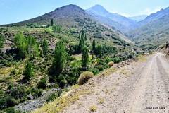 Por la Ruta 39, hacia Varvarco (pepelara56) Tags: ripio montañas ruta rural agreste semiárido paisaje landscape natur nature desert landschaft mountain route montaña senda