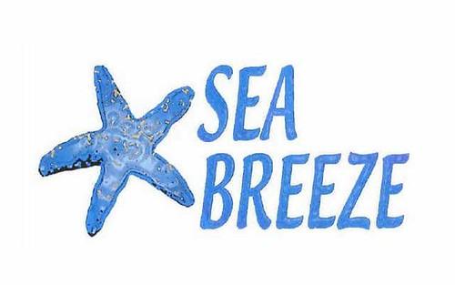 133 Bowerbird Place - Sea Breeze, Malua Bay NSW 2536