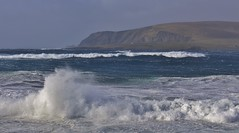 Winter Returns _MG_8194 (Ronnierob) Tags: stormyseas sumburgh shetlandisles
