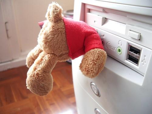 El oso incrustado