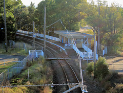 Camelia Station (yewenyi) Tags: railroad morning trees building lines station electric digital fence geotagged crossing sydney platform tracks railway australia pedestrian chain nsw infrastructure newsouthwales aus syd overhead rosehill levelcrossing oceania parramatta pc2142 auspctagged pctagged greatersydney geo:lat=33819669 geo:lon=151023484 auspctaggedmsydney