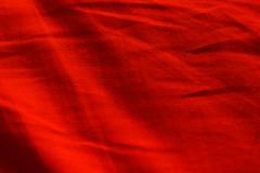 Red cushion (h329) Tags: red macro tamron cushion