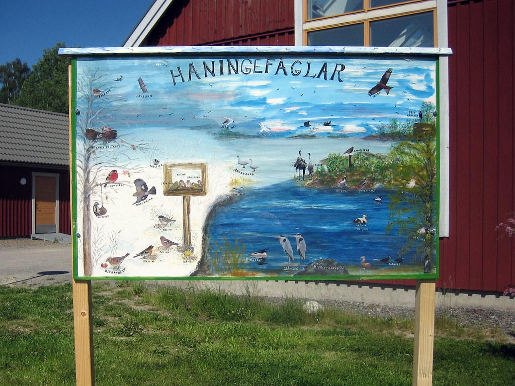 Art Promenade 2006