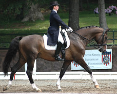 2006 Brentina Cup (Rock and Racehorses) Tags: horses nj quiron gladstone dressage usef