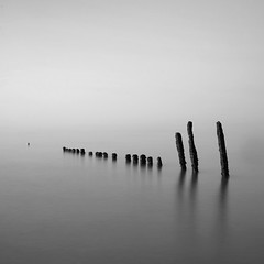 twenty posts (Adam Clutterbuck) Tags: ocean uk longexposure greatbritain sea england blackandwhite bw seascape 20d beach monochrome square landscape mono coast blackwhite canoneos20d bn minimal coastal shore elements slowshutter gb poles bandw posts simple sq eastsussex limitededition winchelsea groynes slowshutterspeed distilled simplified greengage scoreme45 been1of100bw adamclutterbuck abigfave sqbw bwsq showinrecentset limitededition195 midedition le195