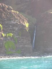 IMG_2431 (Dan F.) Tags: hawaii napalicoast bluedolphin kaua'i