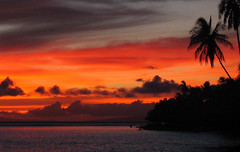 Maui sunset (Walt K) Tags: sunset palms hawaii maui lahaina waltk