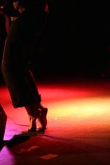 Tip Toes - by Pants Pants