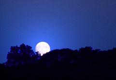 Moonrise II (wit) Tags: blue deleteme5 deleteme8 moon deleteme deleteme2 deleteme3 deleteme4 deleteme6 deleteme9 deleteme7 night deleteme10 moonrise