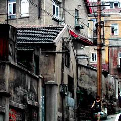 Street (horses and tigers) Tags: china street tag3 taggedout tag2 tag1 qingdao shandong