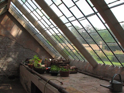 Antique greenhouse interior