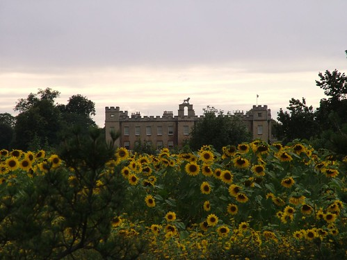 Syon House as seen from Kew (© BerylM)
