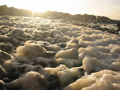 Stange foam at Cemlyn Bay, Anglesey