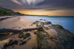 Long-Bay-Portland-Jamaica_04172016-63 (Simmo1342) Tags: clouds golden jamaica sea sony sunset beach caribbeanisland landscape mood moody ocean outdoor sand scenic sky sonya6000 sonyalpha tranquil travel water wave