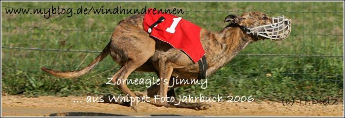 QL9T9755_Zorneagles_Jimmy